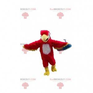 Maskot papouška, kostým papouška, exotický pták - Redbrokoly.com