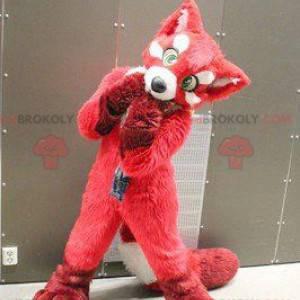 Maskotka psa red fox - Redbrokoly.com