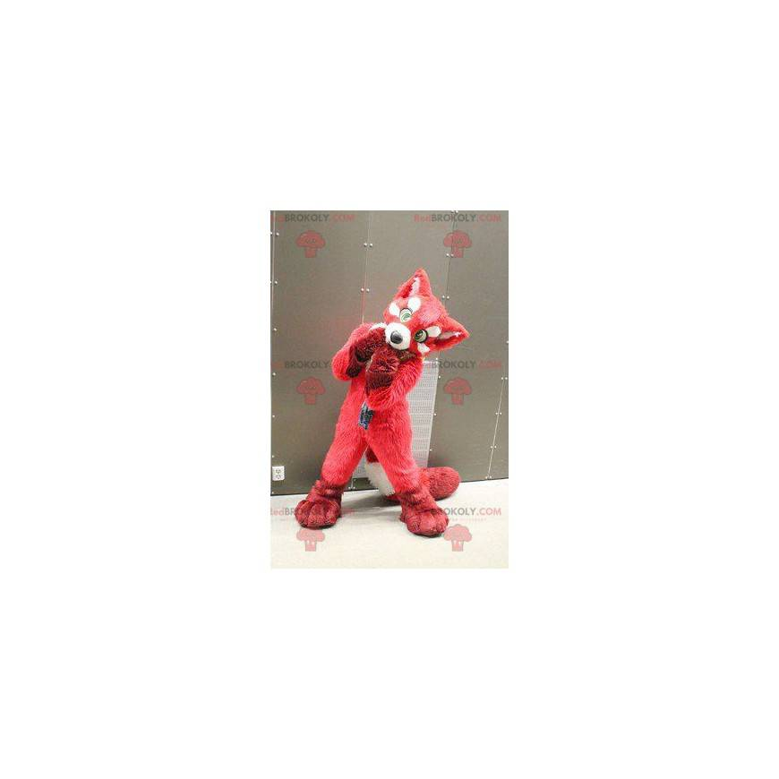 Maskot pes červená liška - Redbrokoly.com