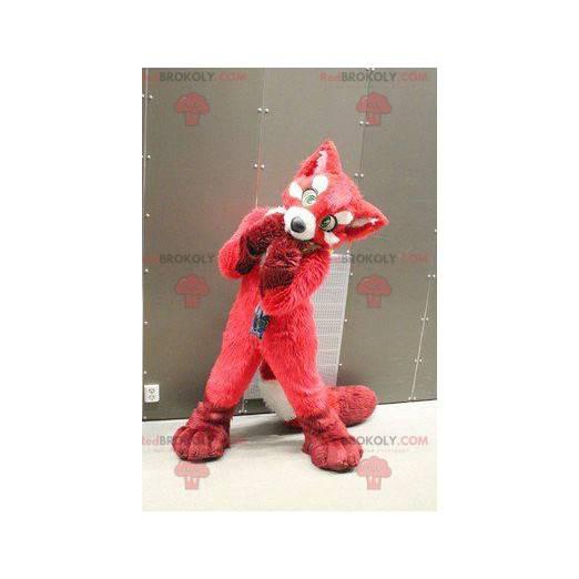 Red fox dog mascot - Redbrokoly.com