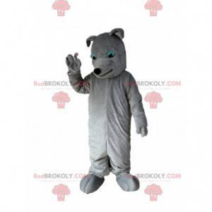 Maskot šedého psa, kostým psa, šedý pejsek - Redbrokoly.com