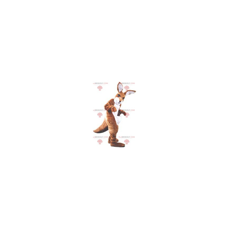 Hnědý a bílý klokan maskot - Redbrokoly.com