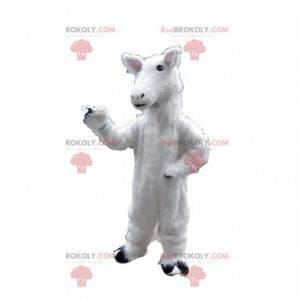Maskot ovcí, kostým jehněčího, kostým bílého koně -