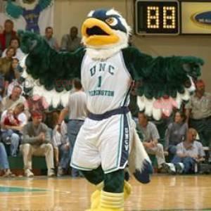 Eagle maskot grønn blå og hvit - Redbrokoly.com