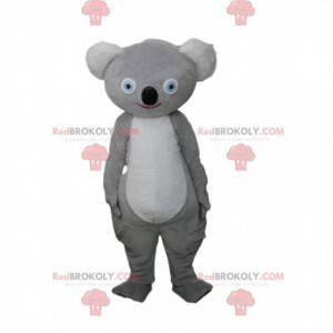 Mascota koala gris, traje australiano, animal australiano -