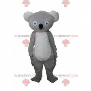 Mascote coala cinza, traje australiano, animal australiano -