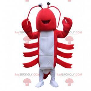 Mascotte rode en witte kreeft, kostuum reusachtige rivierkreeft