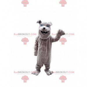 Gray bulldog mascot, purebred dog costume - Redbrokoly.com