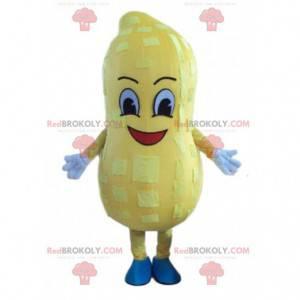 Riesiges Erdnussmaskottchen, Vorspeisenplätzchenkostüm -