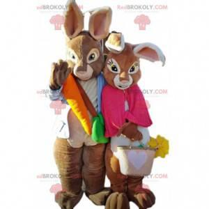 2 maskoti hnědých králíků, pár barevných králíků -