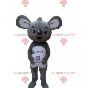 Mascota de koala gris y blanco, traje de Austalia -