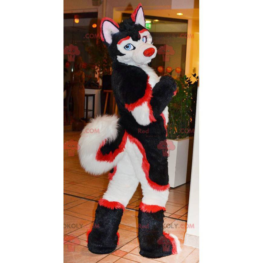 Katzenmaskottchen roter weißer und schwarzer Hund -