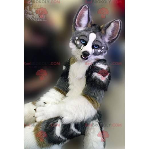 Gray white and brown dog mascot - Redbrokoly.com