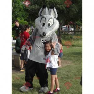Graues und weißes Wolfsmaskottchen in Sportbekleidung -