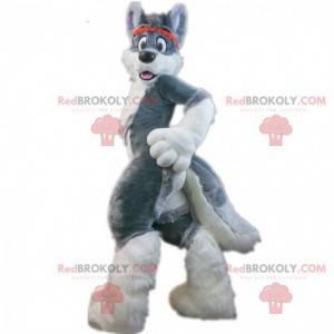 Šedý husky pes maskot, chlupatý pes kostým, liška -
