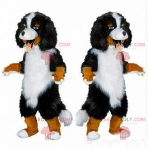 Berner Sennenhund Maskottchen, reinrassiges Hundekostüm -