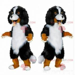 Maskot Bernský salašnický pes, kostým čistokrevného psa -