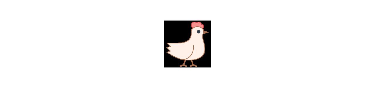 Hens maskot - haner - høns - Maskot kostumer Redbrokoly.com