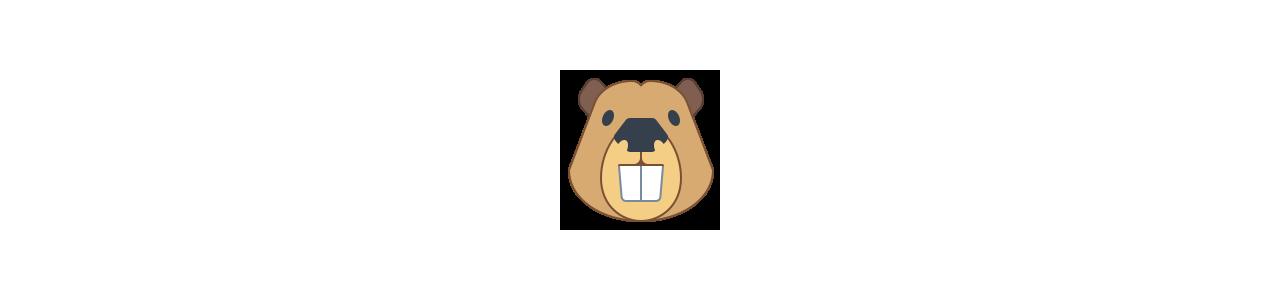 Mascotes de castores - Fantasias de mascote em Redbrokoly.com