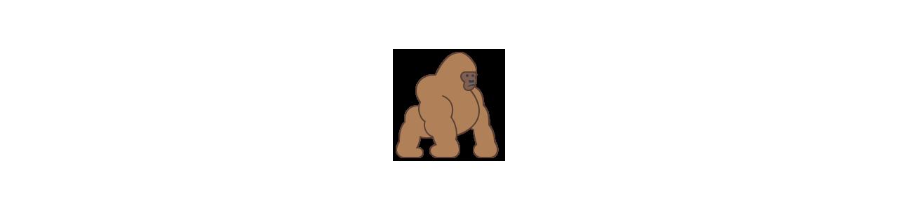Mascotes de gorila - Fantasias de mascote em Redbrokoly.com