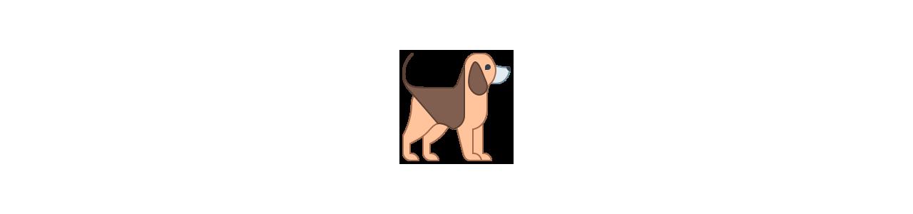 Dog mascots - Mascot costumes Redbrokoly.com