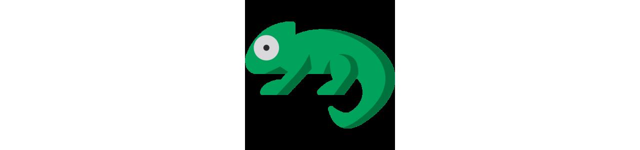 Mascota camaleón - disfraces mascota Redbrokoly.com