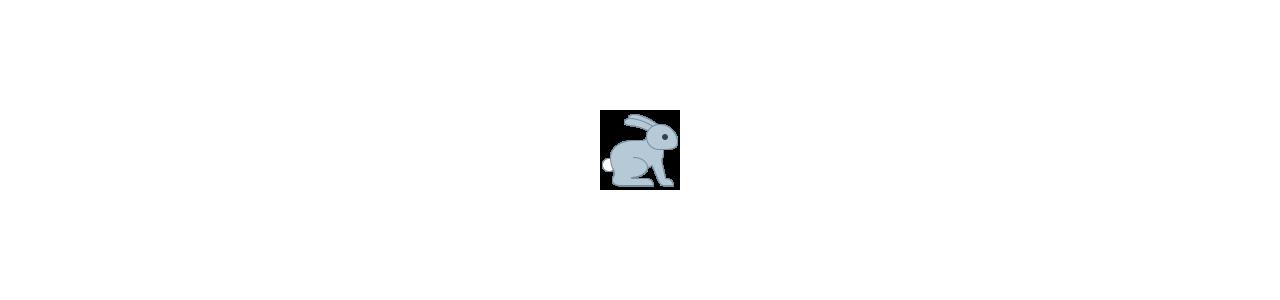 Mascotte coniglio - costumi mascotte Redbrokoly.com