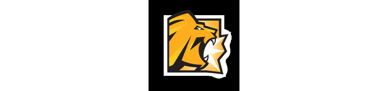 Mascotte del re leone - timon - pumbaa - costumi della mascotte Redbrokoly.com