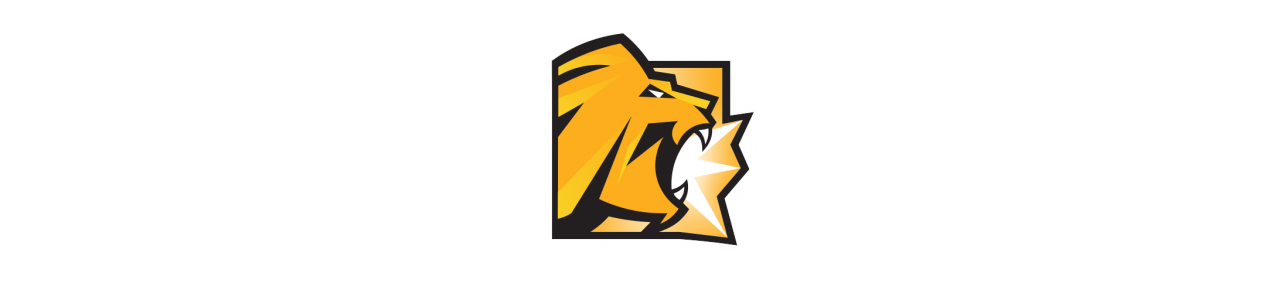 Maskot Lion King - Timon - Pumbaa - maskot kostýmy Redbrokoly.com