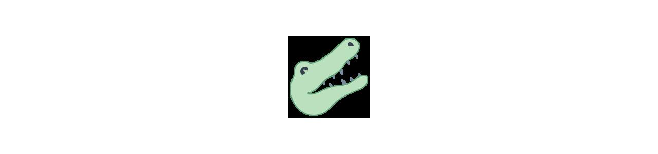 Mascote de crocodilo - Fantasias de mascote em Redbrokoly.com