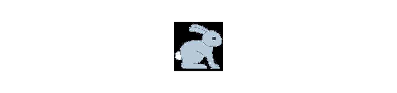 Mascota conejo: disfraces de mascota Redbrokoly.com