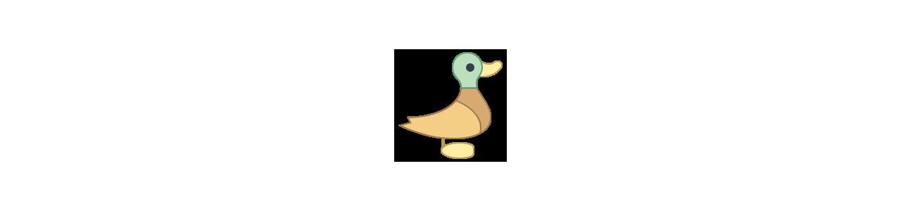 Mascote de patos - Fantasias de mascote em Redbrokoly.com
