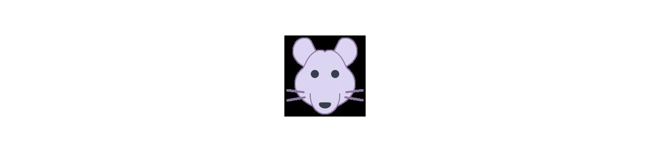 Mascote do mouse - Fantasias de mascote em Redbrokoly.com