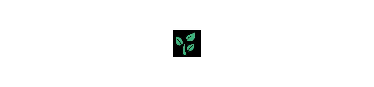 Mascotes de plantas - Fantasias de mascote em Redbrokoly.com