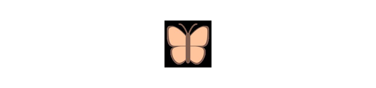 Schmetterlingsmaskottchen - Maskottchenkostüme Redbrokoly.com