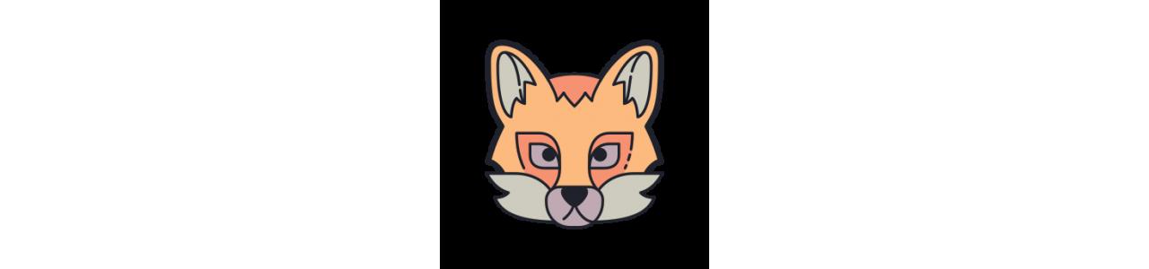 Mascotes de raposa - Fantasias de mascote em Redbrokoly.com