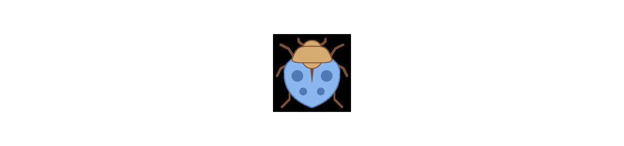 Mascotes de insetos - Fantasias de mascote em Redbrokoly.com