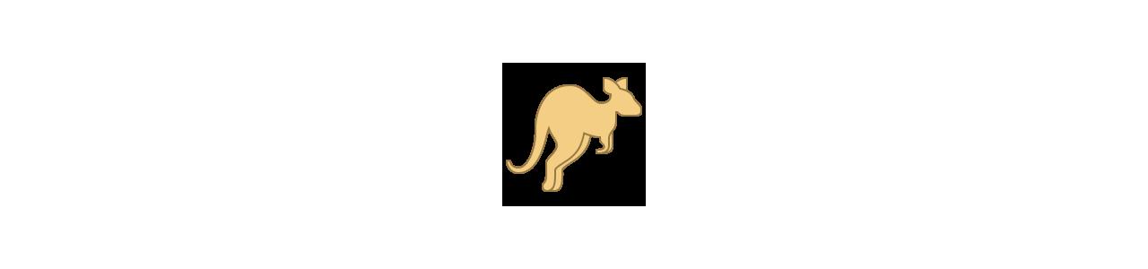 Känguru-Maskottchen - Maskottchenkostüme Redbrokoly.com