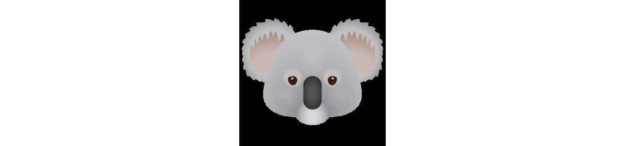 Mascotes de coala - Fantasias de mascote em Redbrokoly.com