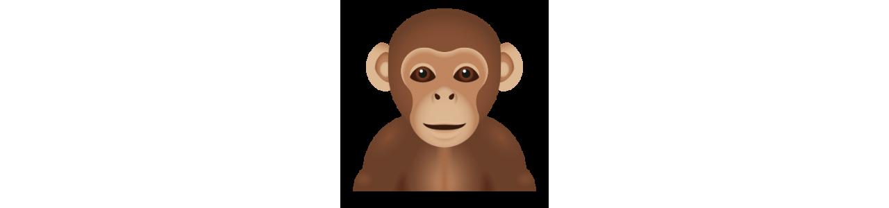 Mascotas mono: disfraces de mascota Redbrokoly.com
