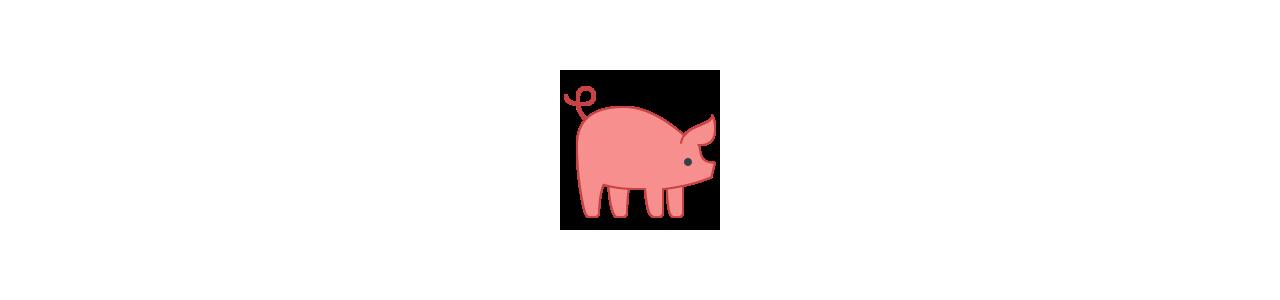 Mascotes de porco - Fantasias de mascote em Redbrokoly.com