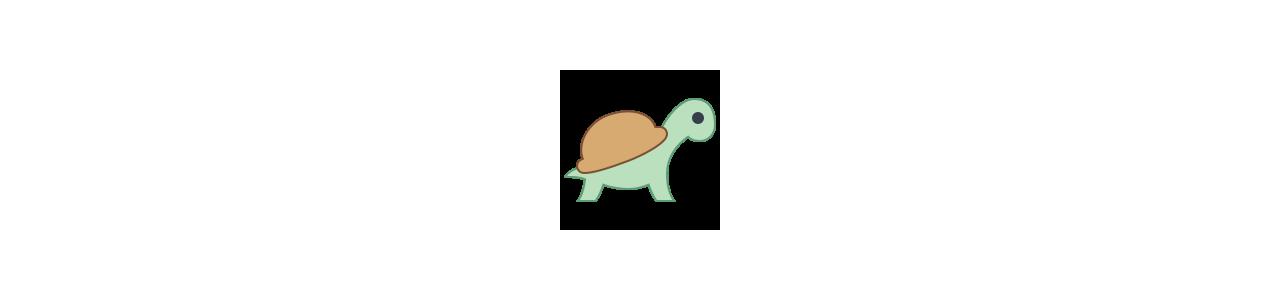 Mascotes de tartaruga - Fantasias de mascote em Redbrokoly.com