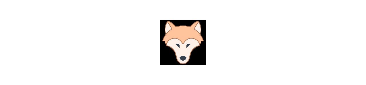 Mascotes do lobo - Fantasias de mascote em Redbrokoly.com
