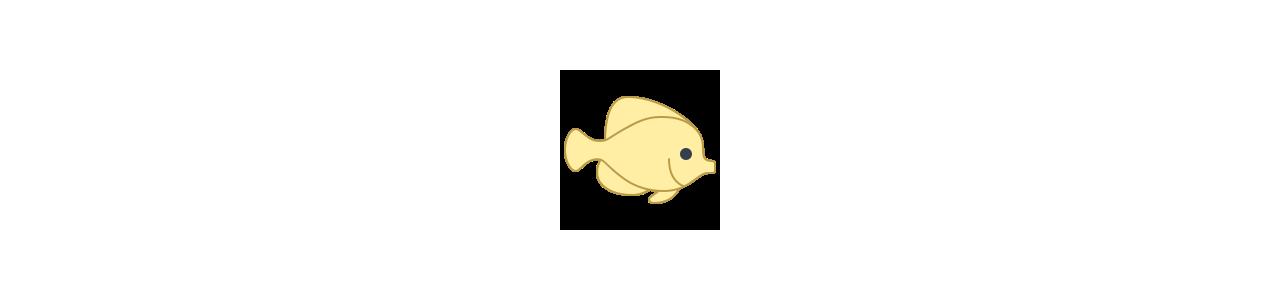 Mascotes de peixe - Fantasias de mascote em Redbrokoly.com