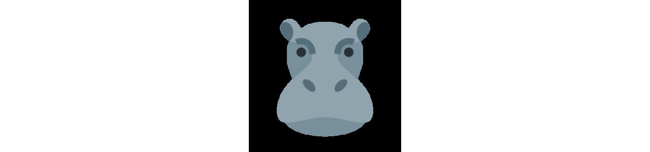 Mascotes de hipopótamo - Fantasias de mascote em Redbrokoly.com