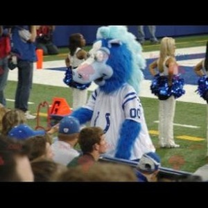 Mascot of the day: Blue and white horse mascot. Discover @redbrokoly #mascots - Link : https://bit.ly/2Znokkz - REDBROKO_0622 #white #mascots #mascot #event #costume #redbrokoly #marketing #customized #and #blue #costume #horse #custom https://www.redbrokoly.com/en/horse-mascots/622-blue-and-white-horse-mascot.html